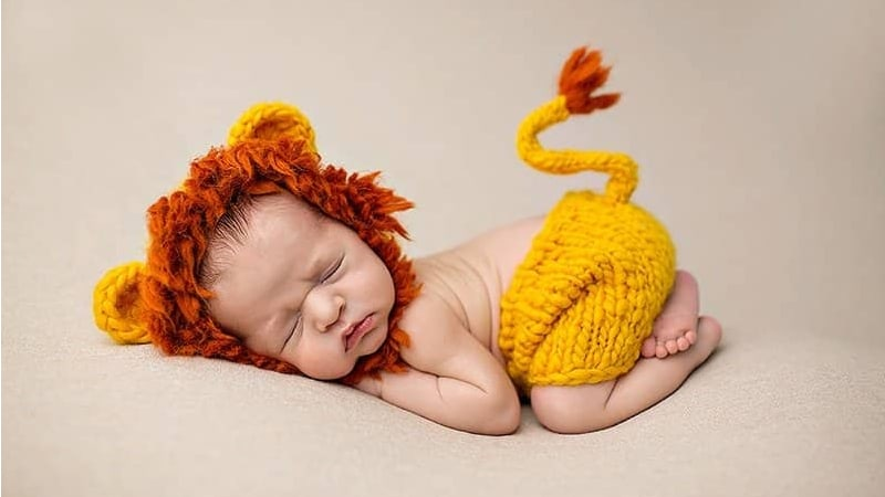 Baby Lion Photo Shoot